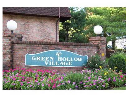 1704 GREEN HOLLOW DR  Iselin, NJ MLS# 1504171