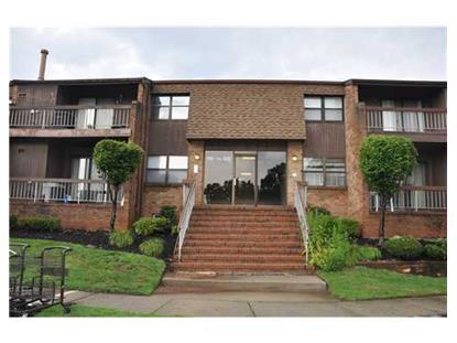 119 SHARON GARDEN CT  Woodbridge, NJ MLS# 1504544