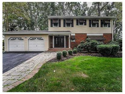 290 UNION HILL RD  Englishtown, NJ MLS# 1504705