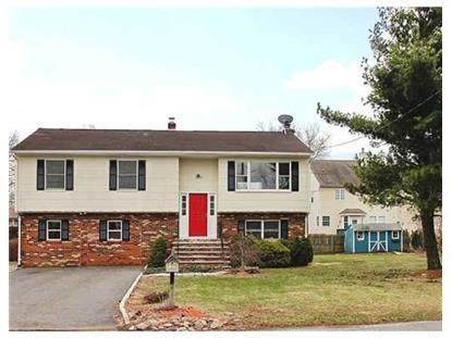 110 HOPKINSON ST South Plainfield, NJ MLS# 1505960