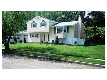 20 OAKTREE RD  Sayreville, NJ MLS# 1506879