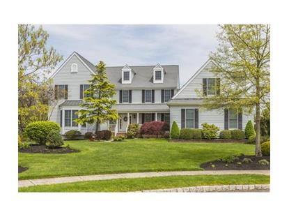 3 Oriole Court Plainsboro, NJ MLS# 1622003