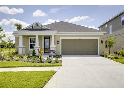 6429 TIDELINE  DR Apollo Beach, FL MLS# A4124891