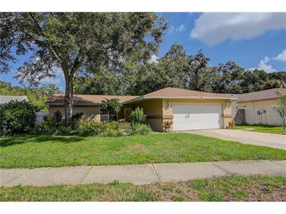 3208 COVENTRY N Safety Harbor, FL MLS# A4165329