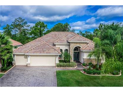 1075 EAGLES FLIGHT WAY North Port, FL MLS# C7055036