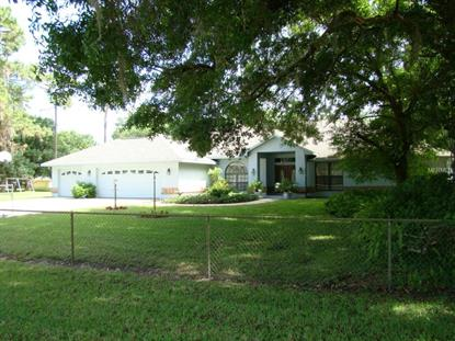 6122 WISTERIA  LOOP Land O Lakes, FL MLS# E2201452