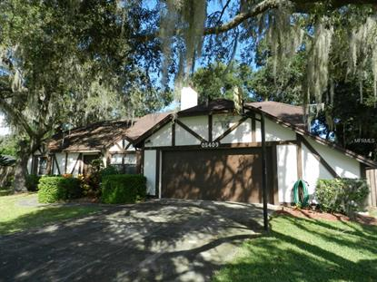 5409 TWIN PALMS RD  Fruitland Park, FL MLS# G4704363