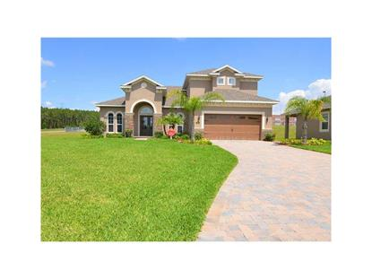 203 BIG SKY DRIVE Minneola, FL MLS# G4705825