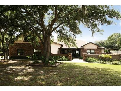 6602 LAKE EMMA ROAD Groveland, FL MLS# G4800404