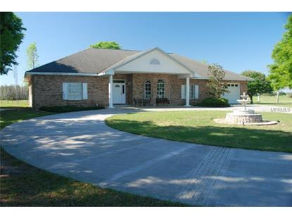 13534 RESTER ROAD Groveland, FL MLS# G4800711