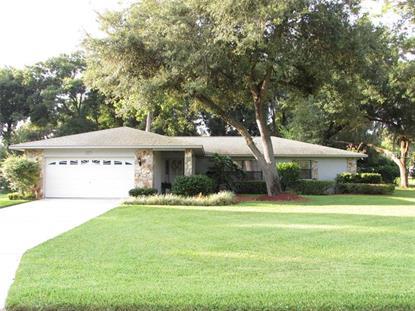 4217 IDLEWILD DRIVE Fruitland Park, FL MLS# G4802193
