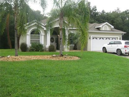 1538 HICKORY RIDGE DRIVE Fruitland Park, FL MLS# G4804108
