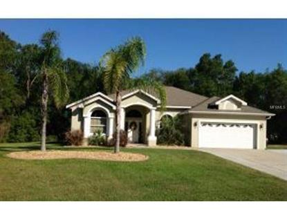 1538 HICKORY RIDGE  DR Fruitland Park, FL MLS# G4808522