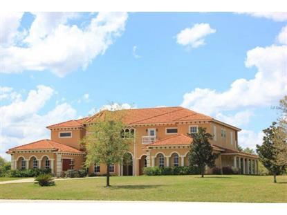 19313 EAGLE  RUN Groveland, FL MLS# G4809631