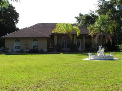 805 DENNIS  AVE Fruitland Park, FL MLS# G4814047