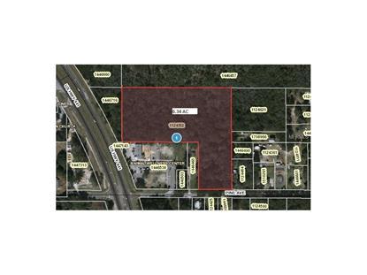 US HIGHWAY 441 & WOLFBRANCH RD  Mount Dora, FL MLS# G4819503