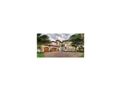 000  ROYAL PALM DR  Groveland, FL MLS# G4819560