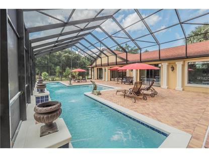 5400 LAKE  ST Mount Dora, FL MLS# G4819577