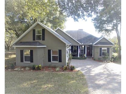 542  SUMMERWOOD DR  Minneola, FL MLS# G4822997