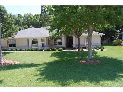 21142 EDINBOROUGH PL Leesburg, FL MLS# G4828021