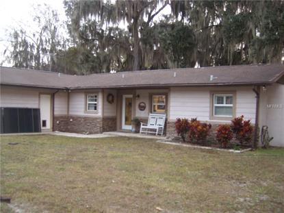 lake panasoffkee fl real estate homes for sale in lake
