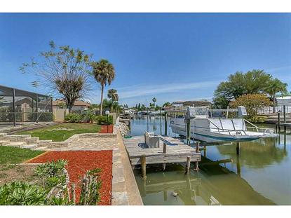 6313 JAMAICA CIRCLE E Apollo Beach, FL MLS# H2079129