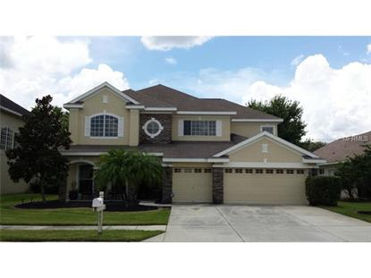 3603 VALENCIA COVE COURT Land O Lakes, FL MLS# H2200341