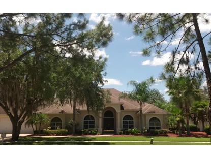 1009 EMERALD CREEK  DR Valrico, FL MLS# L4706599