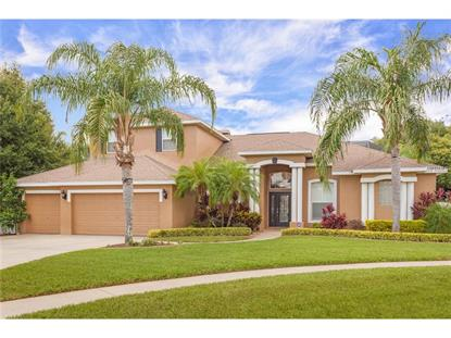 2927 WINDING TRAIL  DR Valrico, FL MLS# L4709442