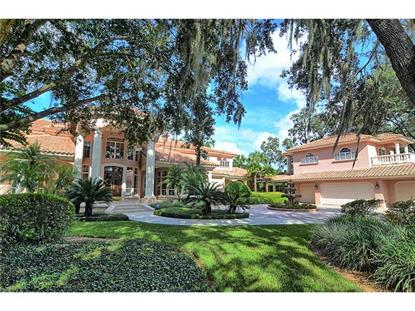 Address not provided Mount Dora, FL MLS# O5183771