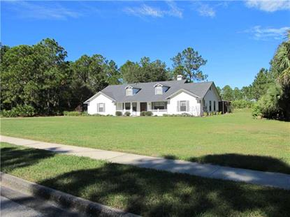 224 WINDING RIVER LANE Geneva, FL MLS# O5197667