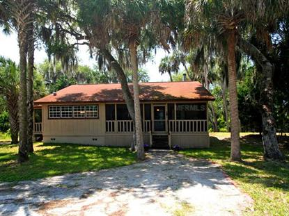 4259 LAKE HARNEY CIRCLE Geneva, FL MLS# O5199256