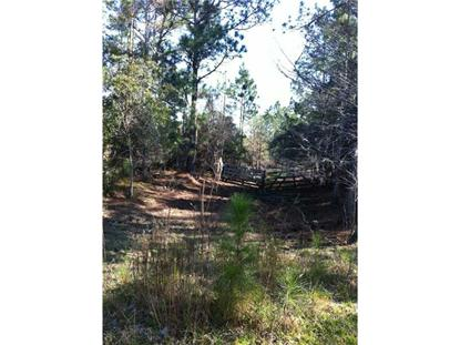 West State Road 46 Geneva, FL MLS# O5205313