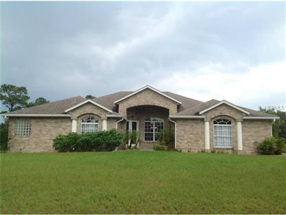 1211 CATTLE DRIVE TRAIL Geneva, FL MLS# O5216852