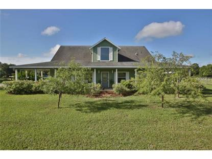 419 LEMON BLUFF ROAD Osteen, FL MLS# O5304859