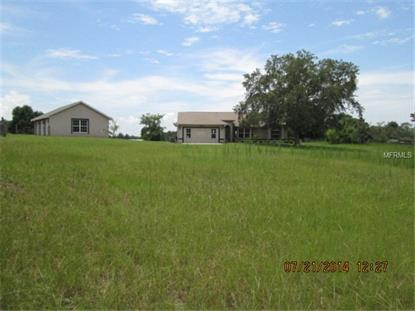 40139 JIM SCOTTS ROAD Leesburg, FL MLS# O5308811