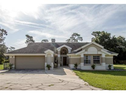 311 LAKE PROCTOR COURT Geneva, FL MLS# O5309808