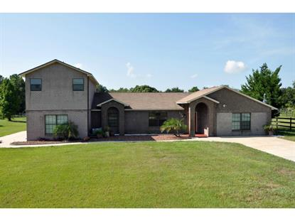 179 EASTSIDE  LN Osteen, FL MLS# O5315185