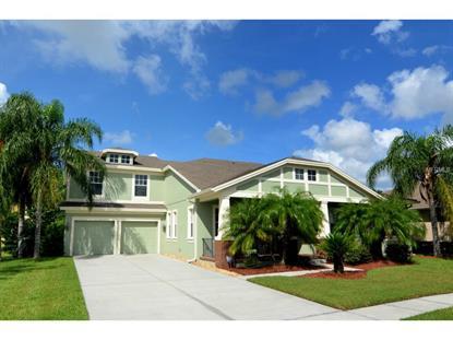 14264 ANASTASIA  LN Orlando, FL MLS# O5316709