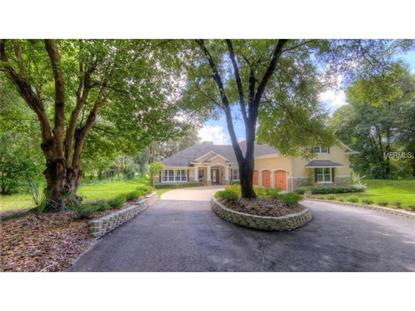 1107 LINDLEY COVE CIRCLE Deland, FL MLS# O5316894