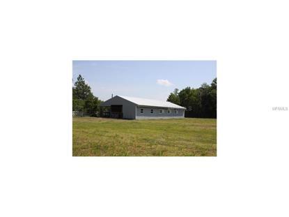 1766 OAK VIEW FARMS ROAD Osteen, FL MLS# O5320082