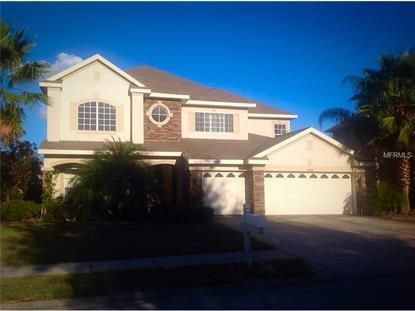 23241 ABERCORN  LN Land O Lakes, FL MLS# O5332505