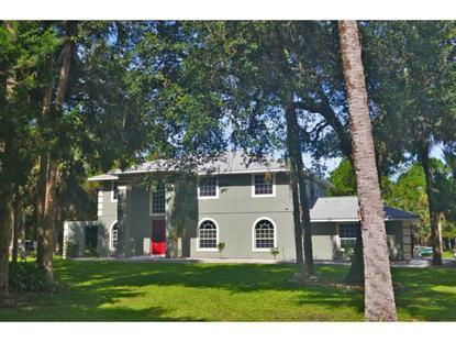 1670 MULLET LAKE PARK  RD Geneva, FL MLS# O5338247