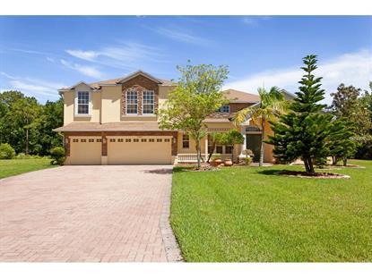 14439 FAWNHAVEN  CT Orlando, FL MLS# O5364058