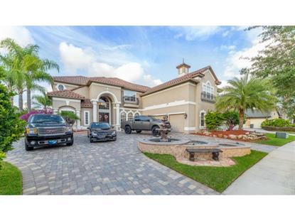 2349 BUCKINGHAM RUN  CT Orlando, FL MLS# O5369855