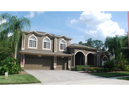 2355 STEWARTS  CV Orlando, FL MLS# O5383098