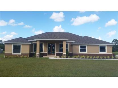 18751 NORTHROP  ST Orlando, FL MLS# O5385184