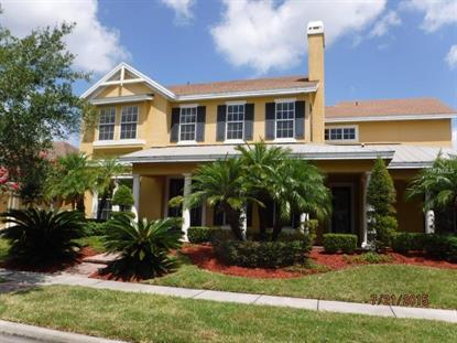 14361 CHINESE ELM  DR Orlando, FL MLS# O5386015