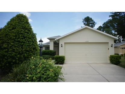 11849 ARANDA  CT Hudson, FL MLS# O5389126