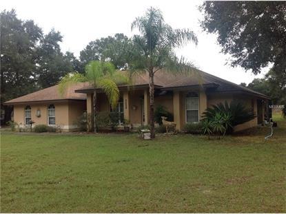 805  DENNIS AVE  Fruitland Park, FL MLS# O5410449